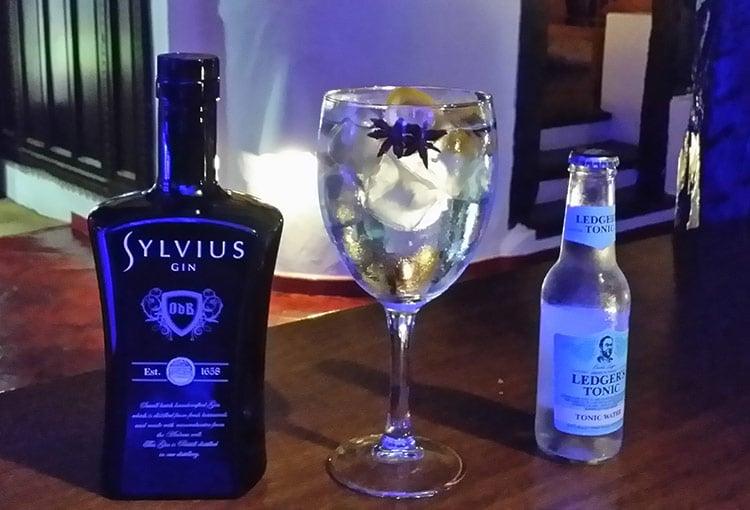 Gintonic premium de Sylvius y Ledger's