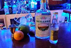 Ginebra premium Segarra