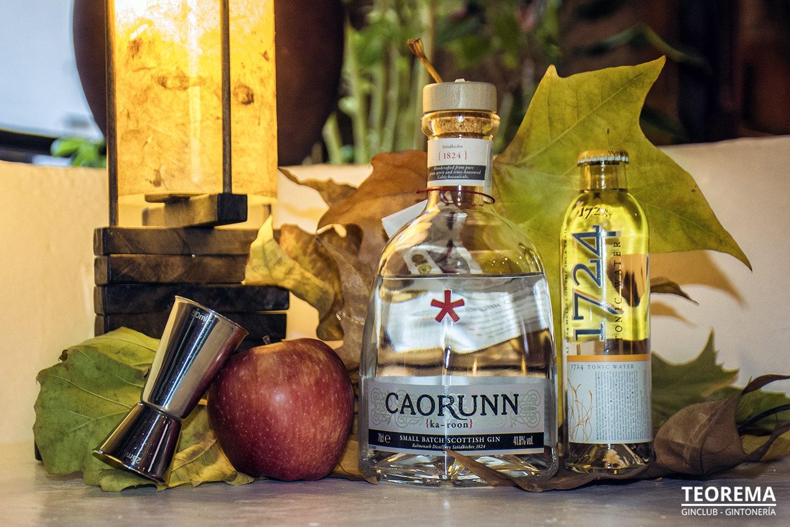 Ginebra premium escocesa-Caorunn Gin-Teorema Pub